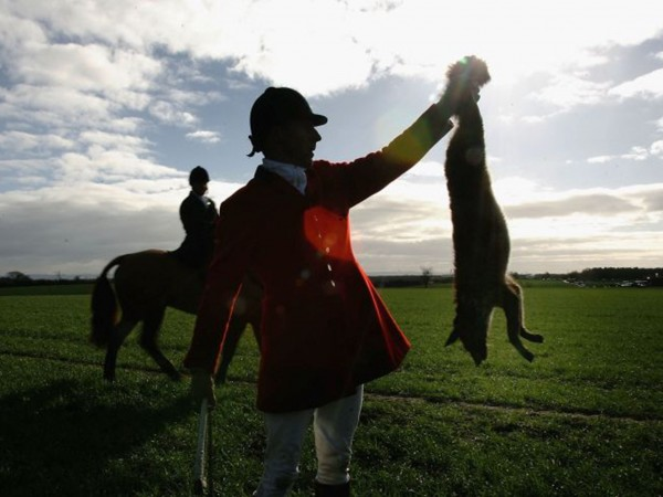Hunting Should Never Be Banned – Important Reasons Hunting Should Never Be Banned – Important Reasons