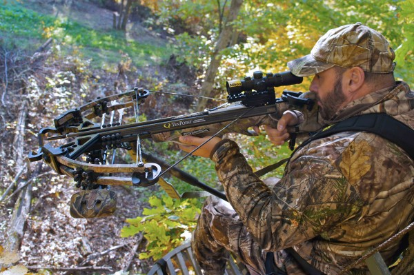 Rifle Vs. Bow Hunting-Pros And Cons