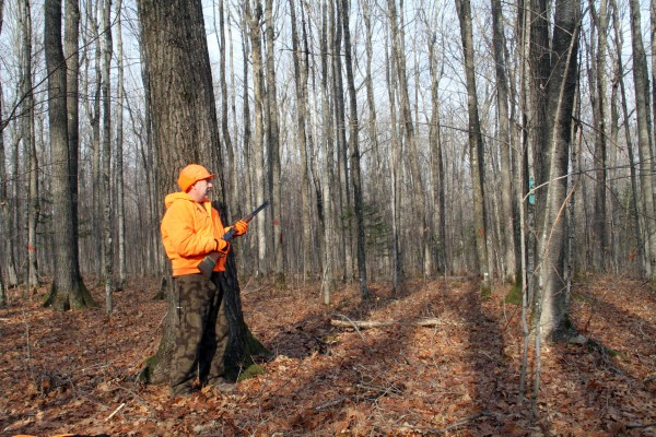 Safety Tips To Ensure While Deer Hunting